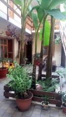 Гостевой дом Афалина Адлер