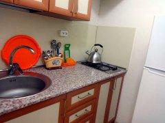 Студия с индивидуальной кухней 1 этаж